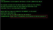 在Debian上添加OpenVPN